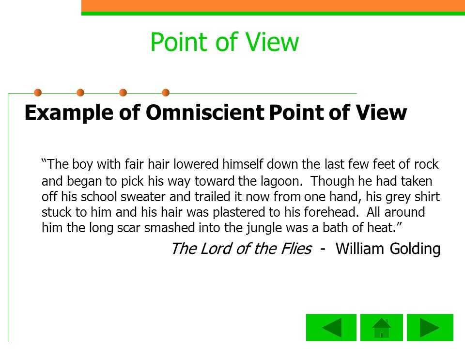 Point of View Example of Omniscient Point of View