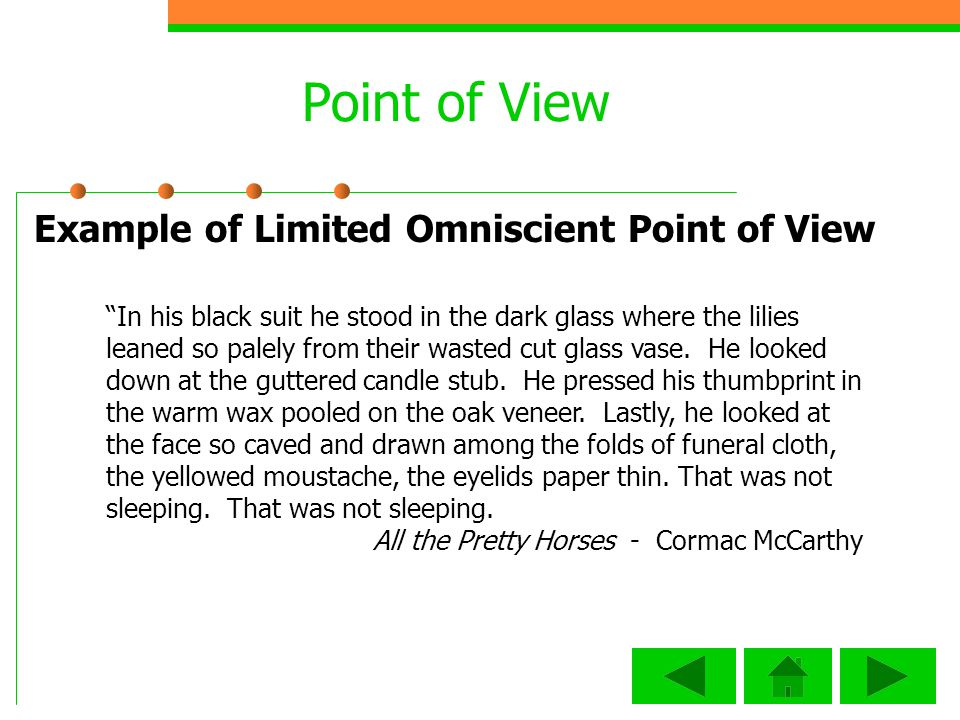 Point of View Example of Limited Omniscient Point of View