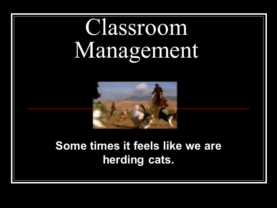 Some times it feels like we are herding cats.