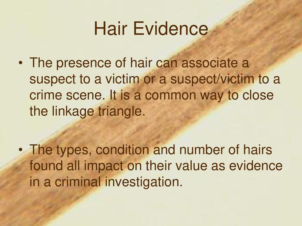 Fiber Evidence Hair Notes Ppt Download