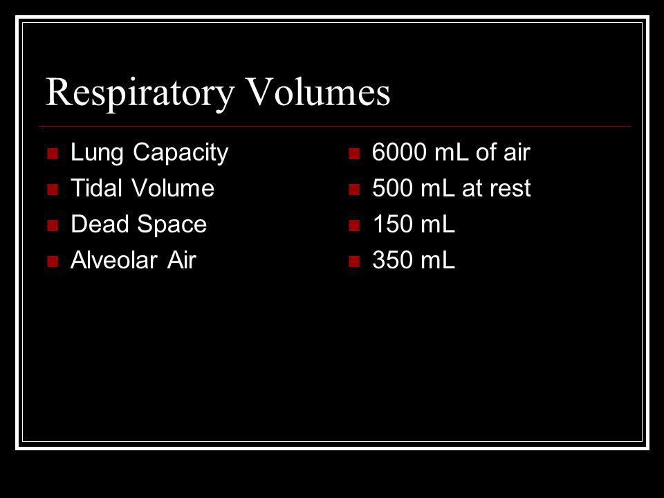 Respiratory Volumes Lung Capacity Tidal Volume Dead Space Alveolar Air