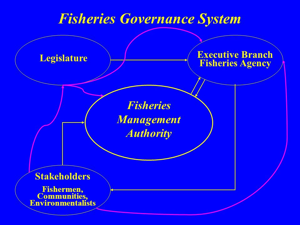 Fisheries Governance System