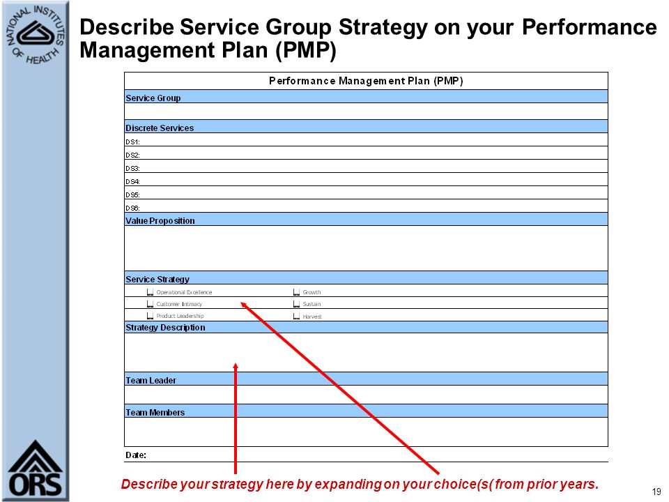 Describe Service Group Strategy on your Performance Management Plan (PMP)