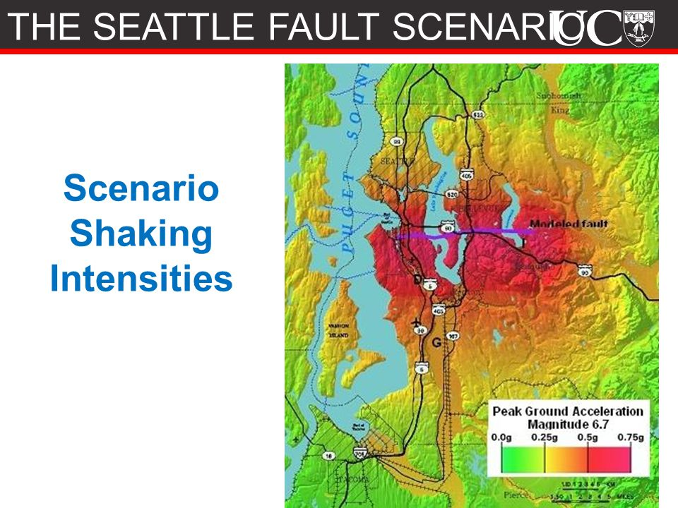 Scenario Shaking Intensities