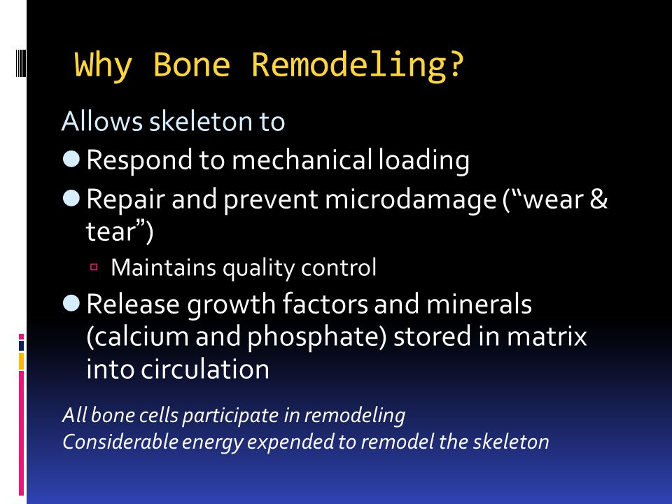 Why Bone Remodeling Allows skeleton to Respond to mechanical loading