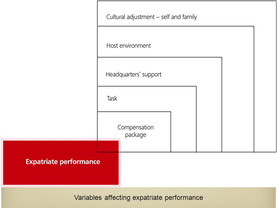 Variables affecting expatriate performance