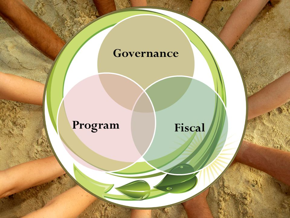 Governance Fiscal Program