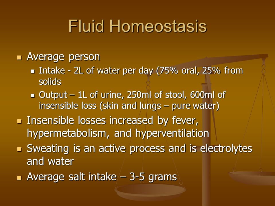Fluid Homeostasis Average person