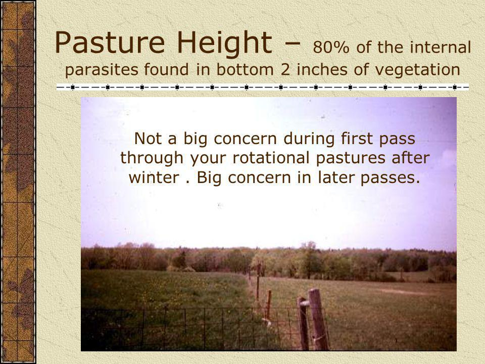 Pasture Height – 80% of the internal parasites found in bottom 2 inches of vegetation