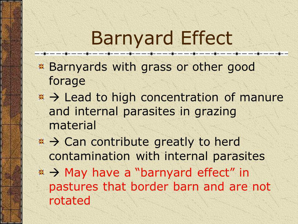 Barnyard Effect Barnyards with grass or other good forage