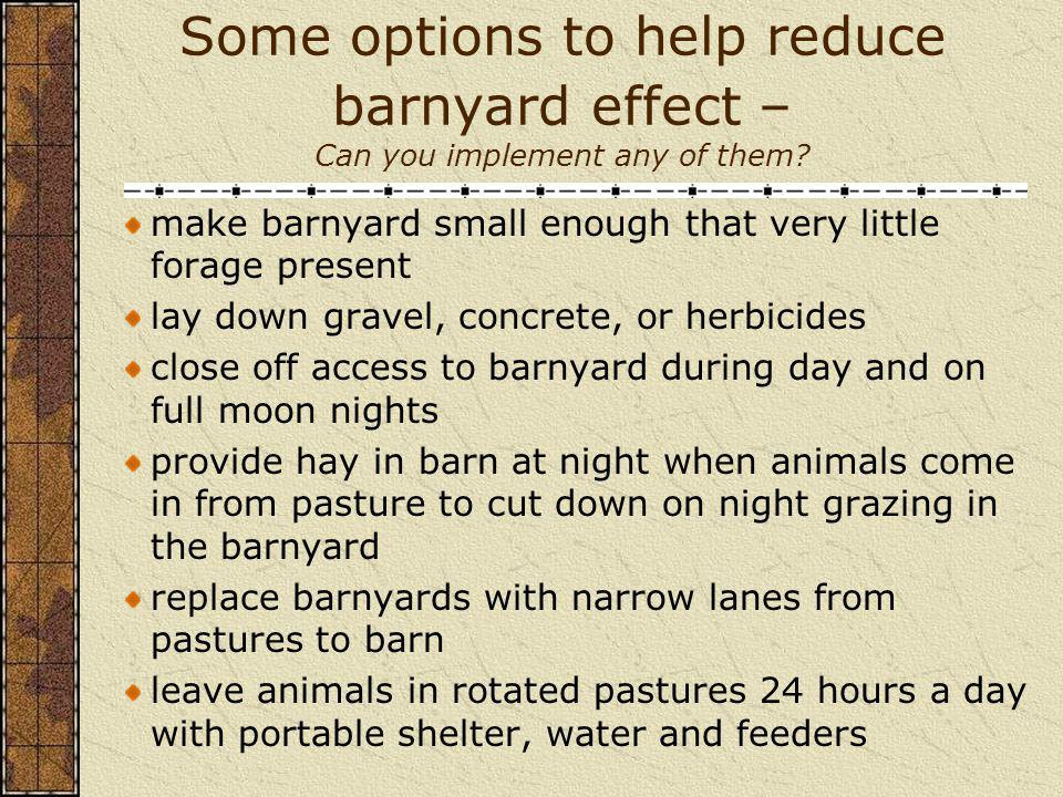 Some options to help reduce barnyard effect – Can you implement any of them