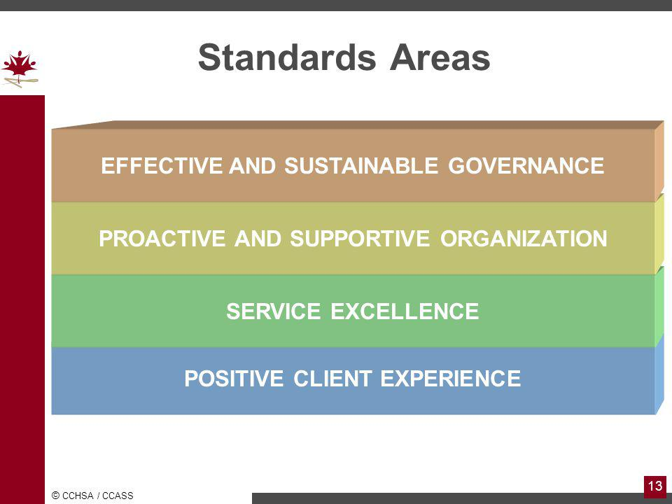 Standards Areas EFFECTIVE AND SUSTAINABLE GOVERNANCE