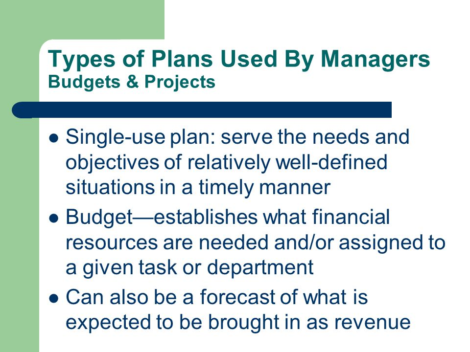 Types of Plans Used By Managers Budgets & Projects