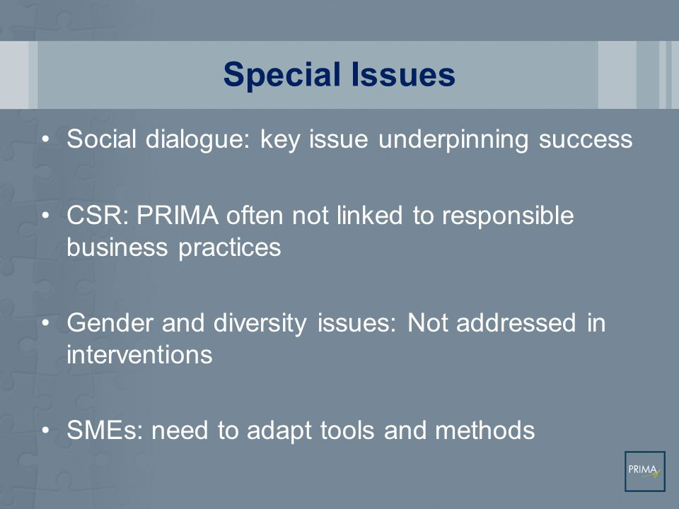 Special Issues Social dialogue: key issue underpinning success