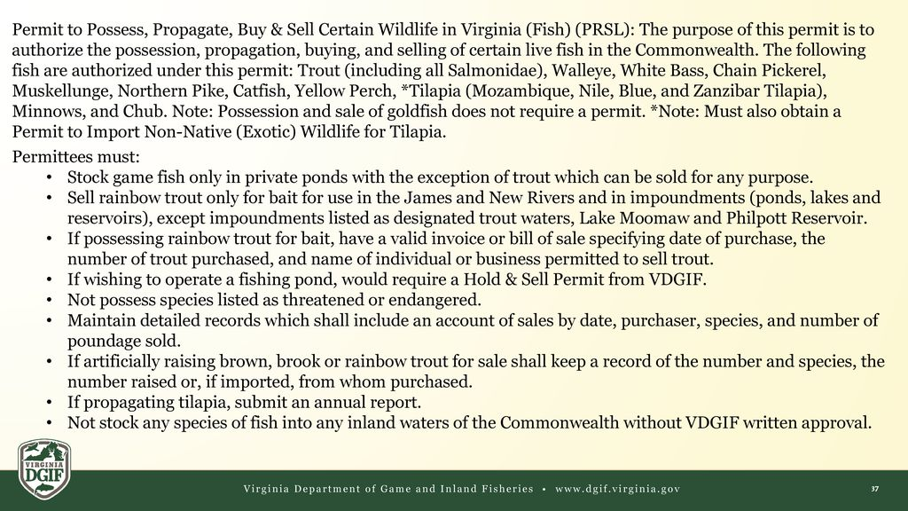 Wildlife Permits  - ppt download