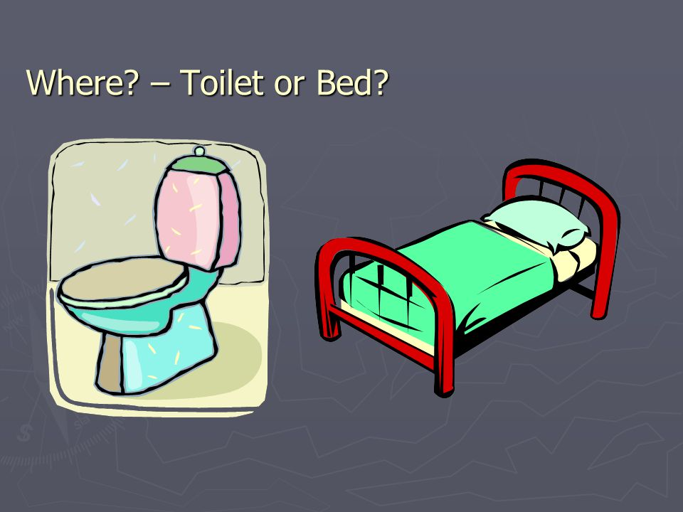 Where – Toilet or Bed
