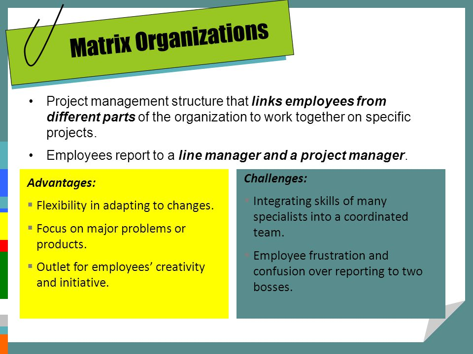 Matrix Organizations