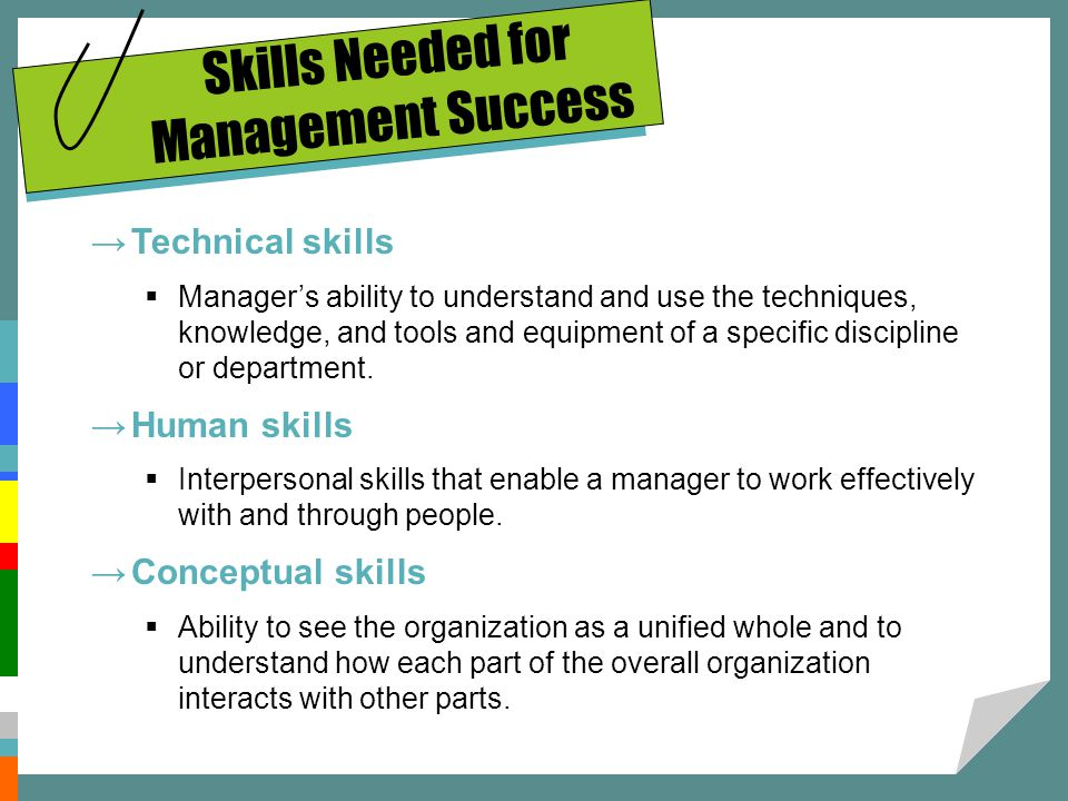 Skills Needed for Management Success