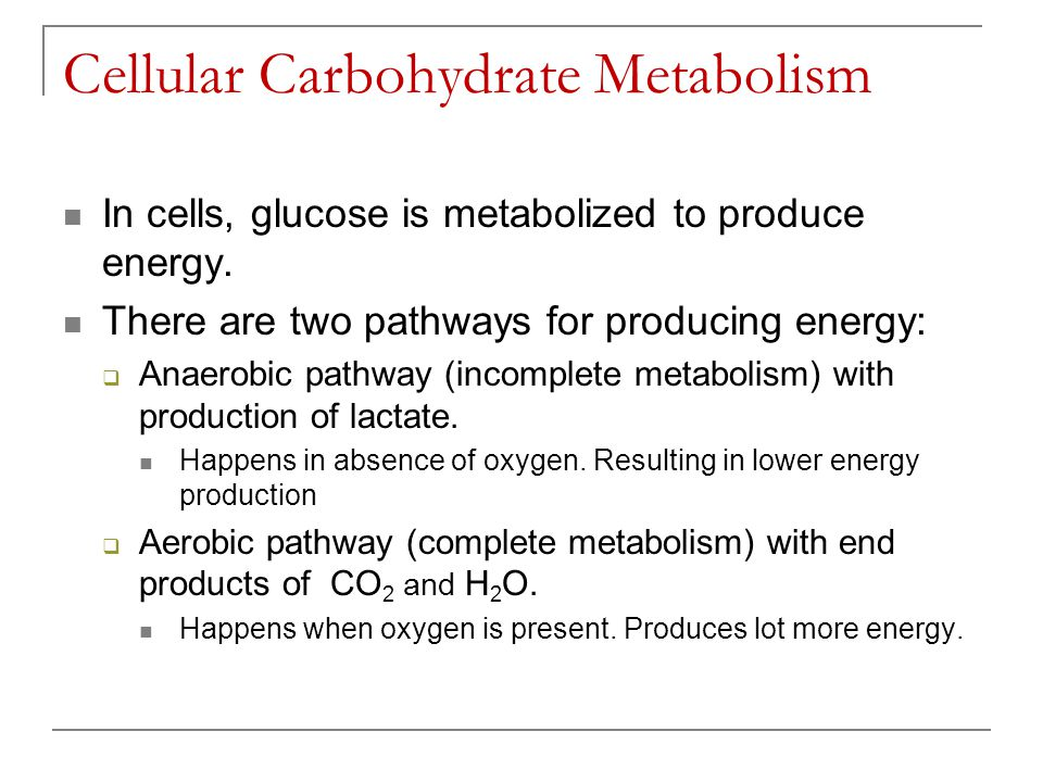 Cellular Carbohydrate Metabolism