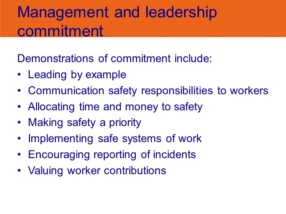 Management and leadership commitment