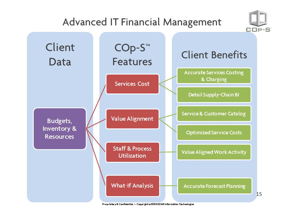 IT Cost Optimization Using A Financial Management For IT Service