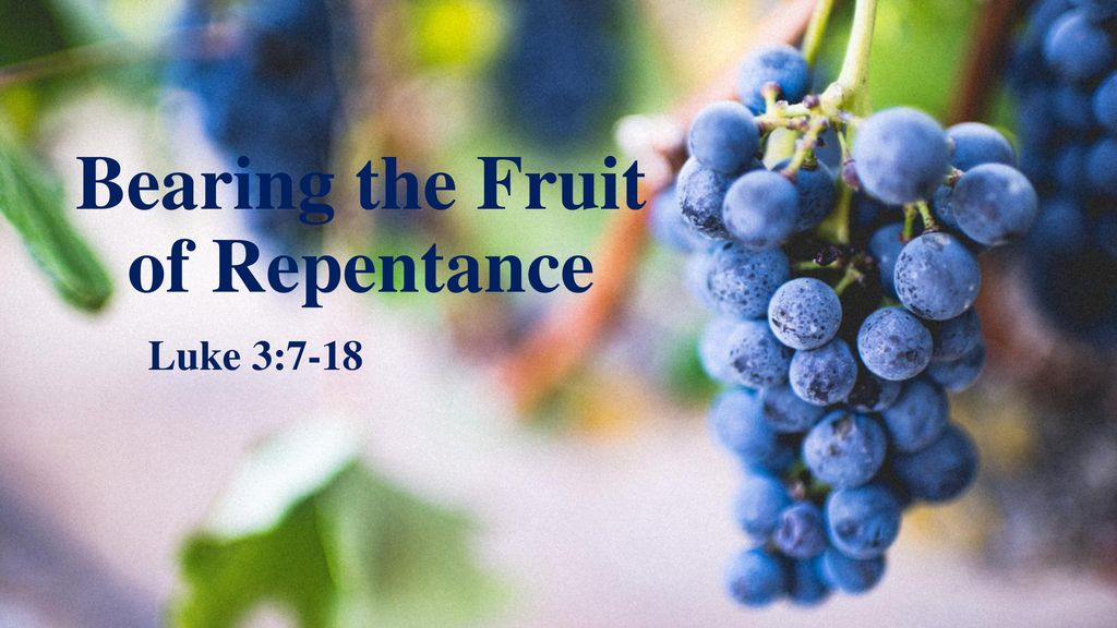 Image result for fruit of repentance