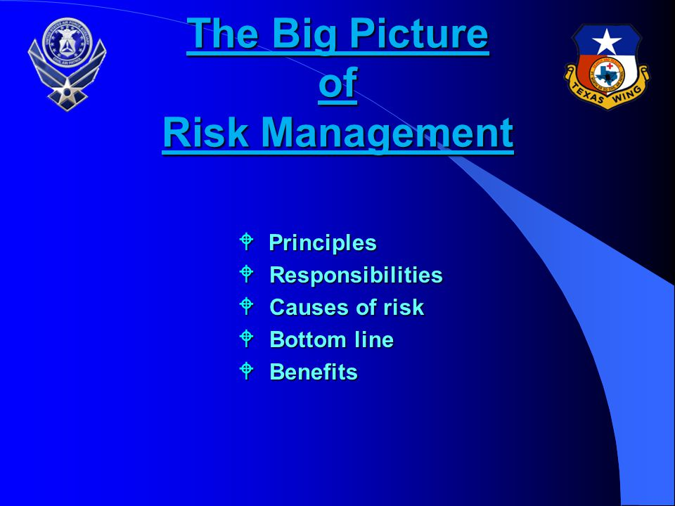 The Big Picture of Risk Management