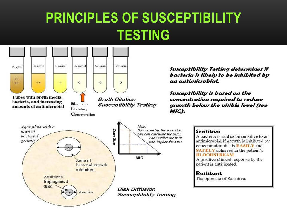 Principles of susceptibility testing