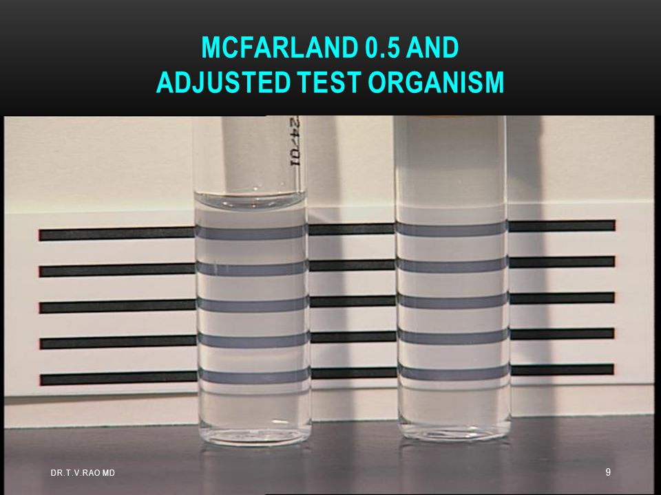 McFarland 0.5 and Adjusted Test Organism