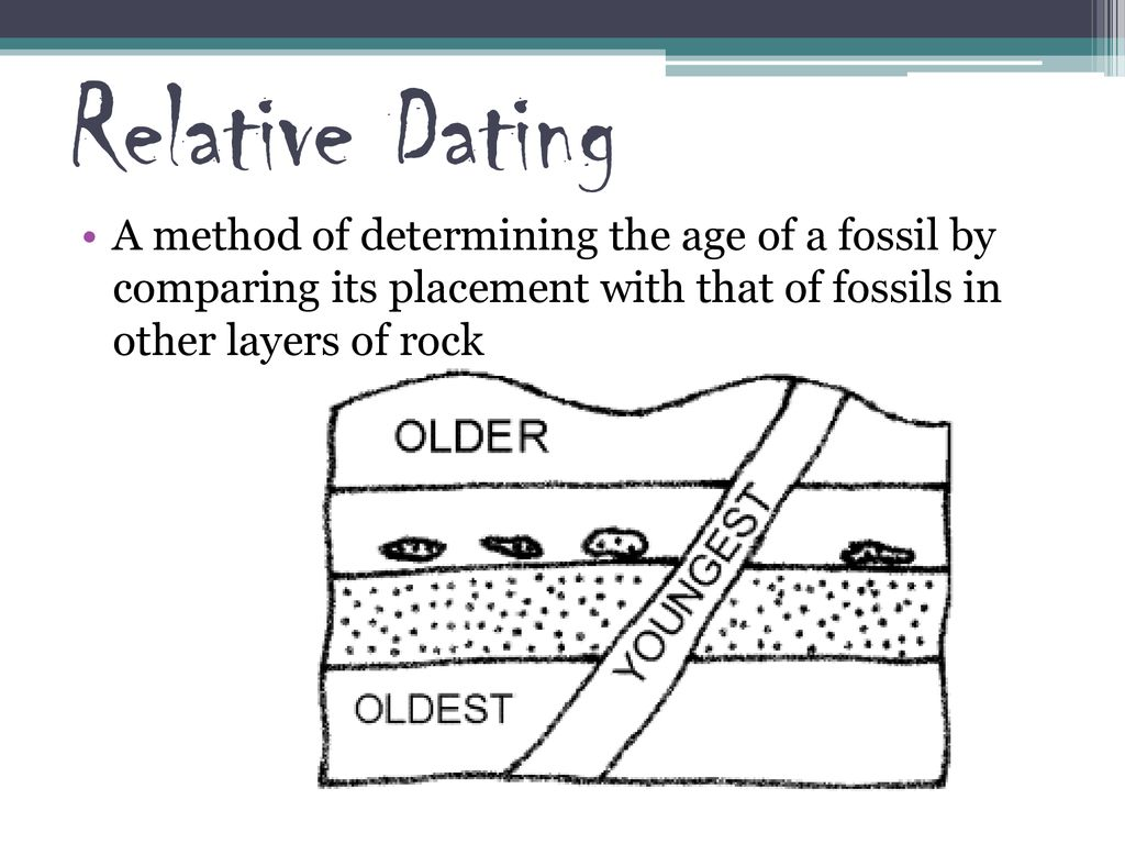 Dating fossils relative worksheet of Dating Fossils