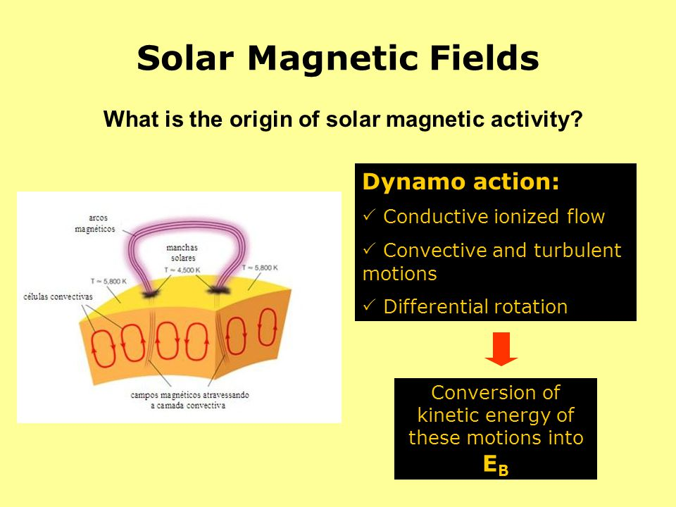 What is the origin of solar magnetic activity