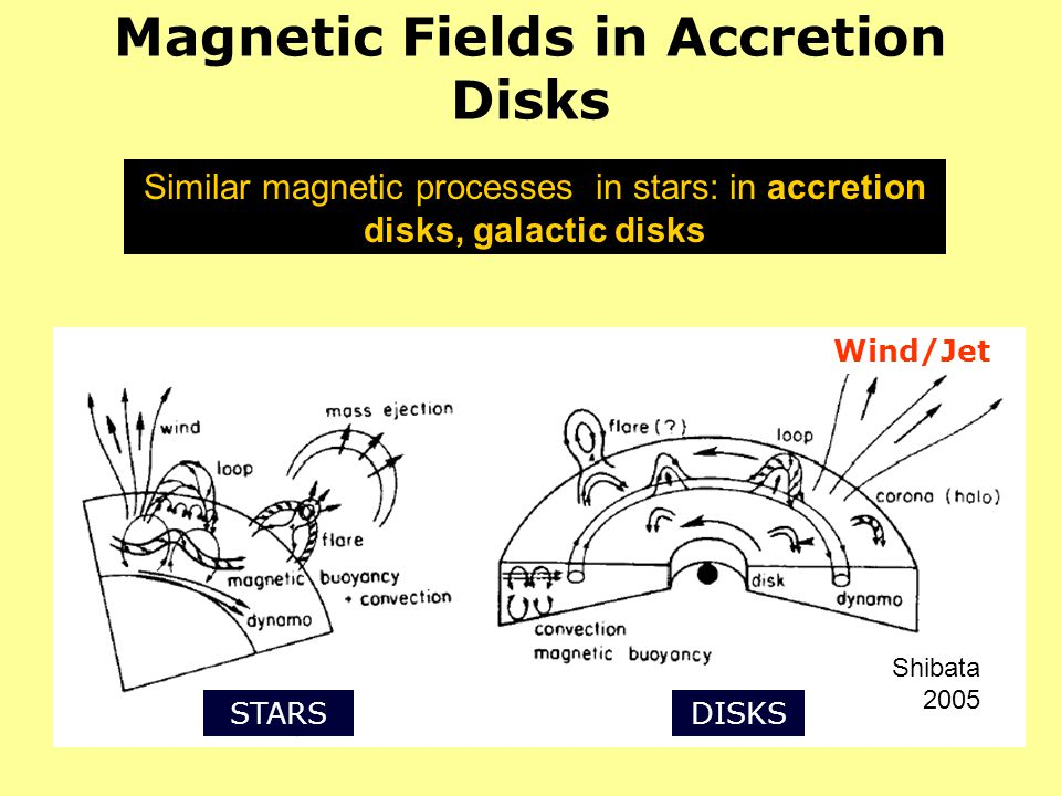 Magnetic Fields in Accretion Disks