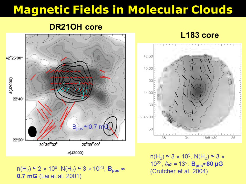 Magnetic Fields in Molecular Clouds
