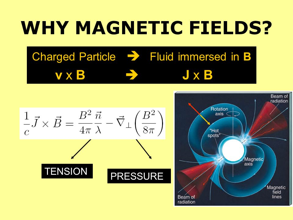 Charged Particle  Fluid immersed in B