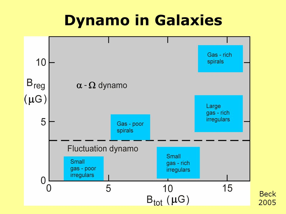 Dynamo in Galaxies Beck 2005