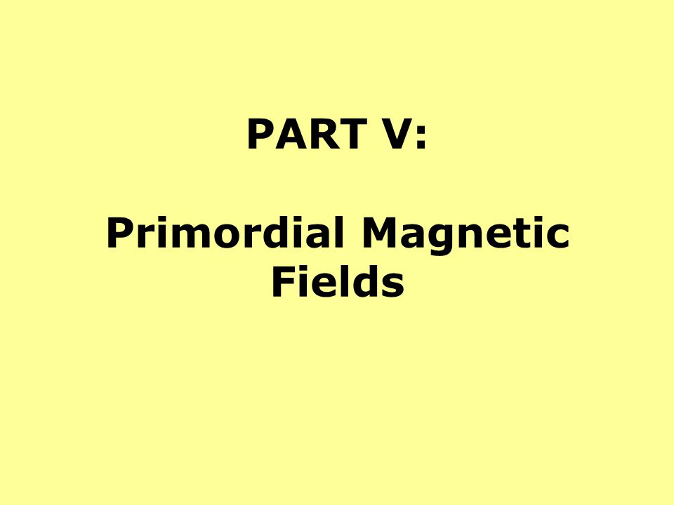 PART V: Primordial Magnetic Fields
