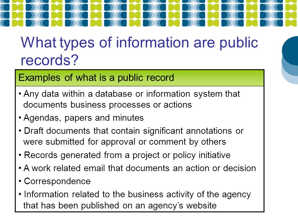 What types of information are public records