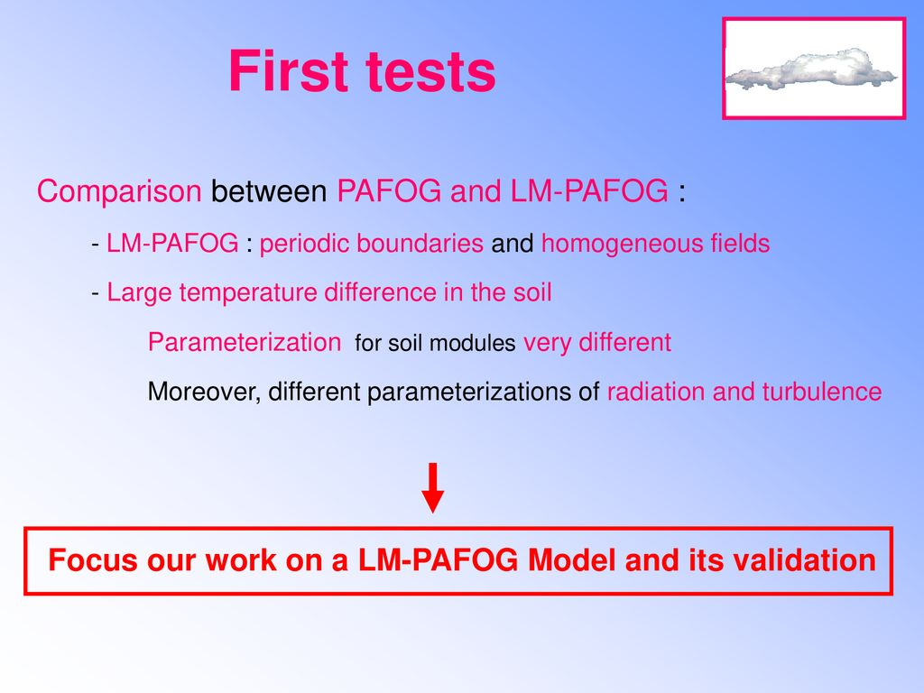 Focus our work on a LM-PAFOG Model and its validation