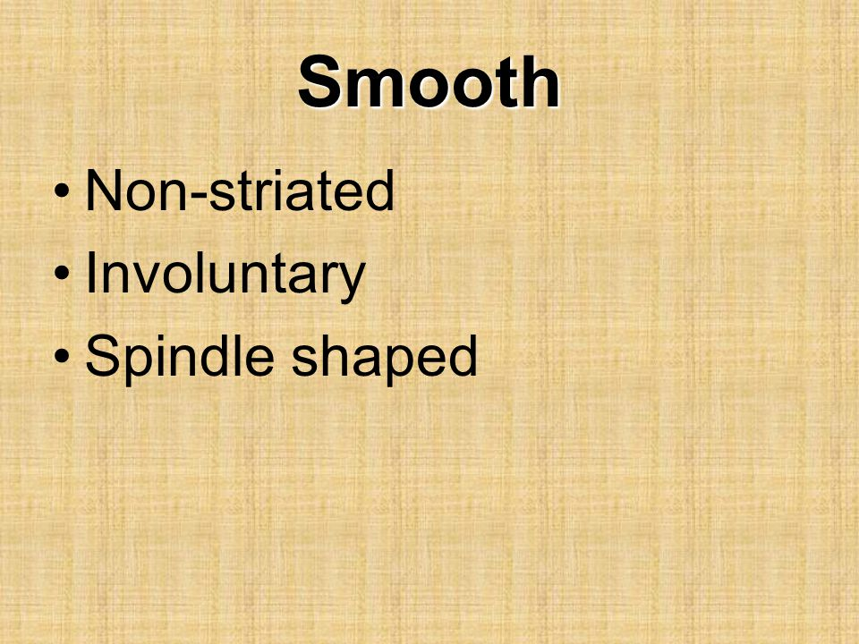 Smooth Non-striated Involuntary Spindle shaped