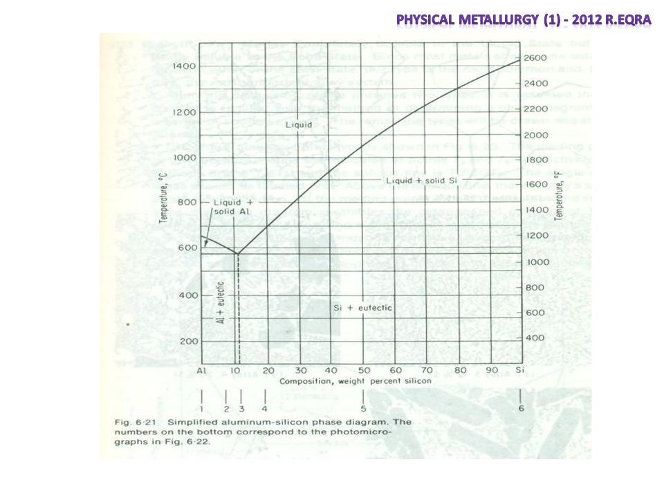 Phases and the phase diagram ppt video online download 31 physical metallurgy ccuart Images