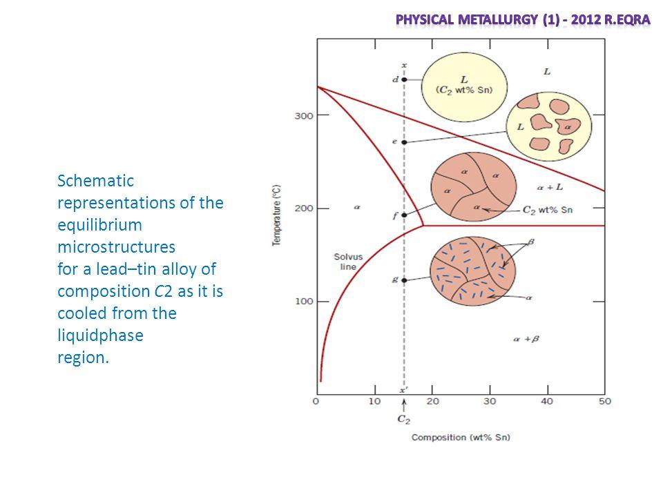 Pb Mg Phase Diagram Electrical Wiring Diagrams