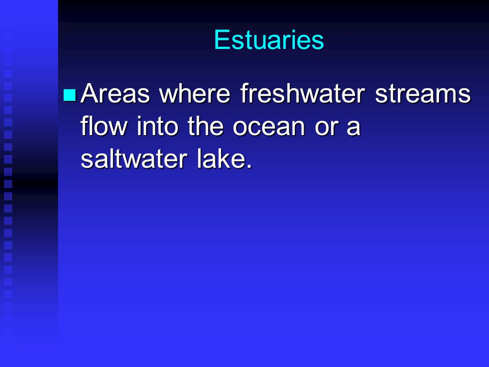 Estuaries Areas where freshwater streams flow into the ocean or a saltwater lake.