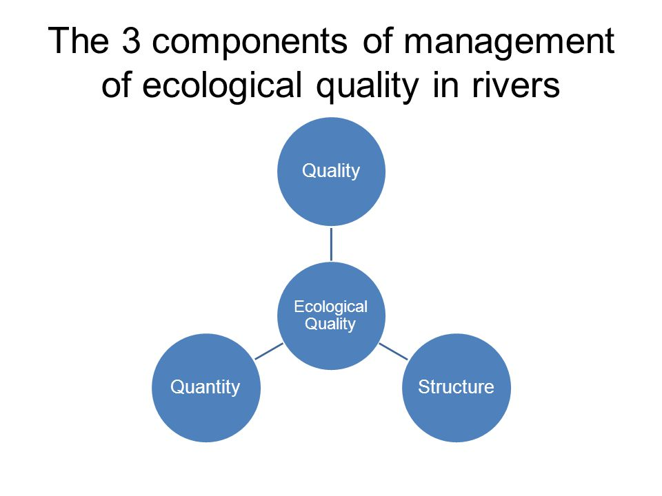 The 3 components of management of ecological quality in rivers