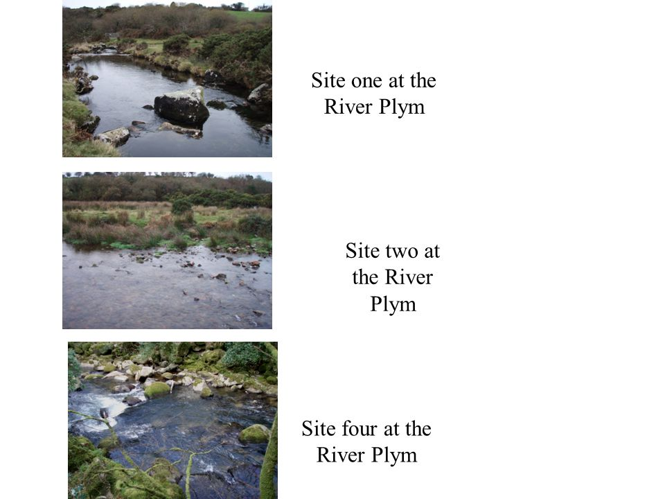 Site one at the River Plym