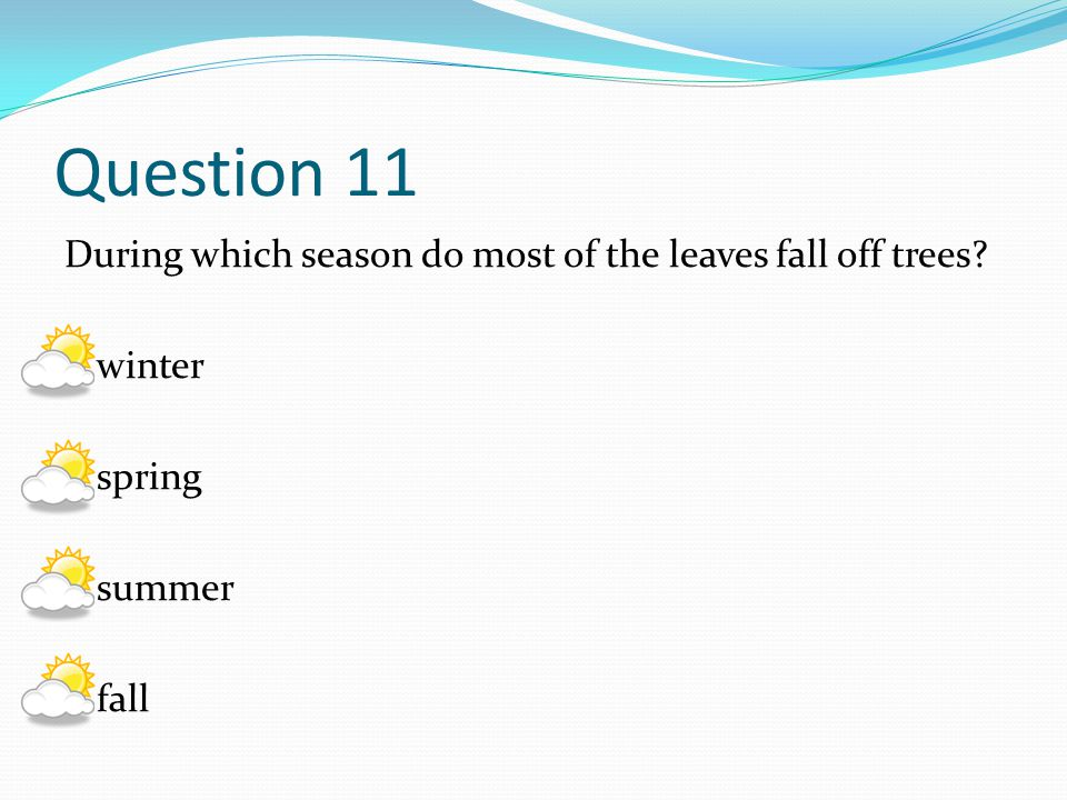 Question 11 During which season do most of the leaves fall off trees winter spring summer fall