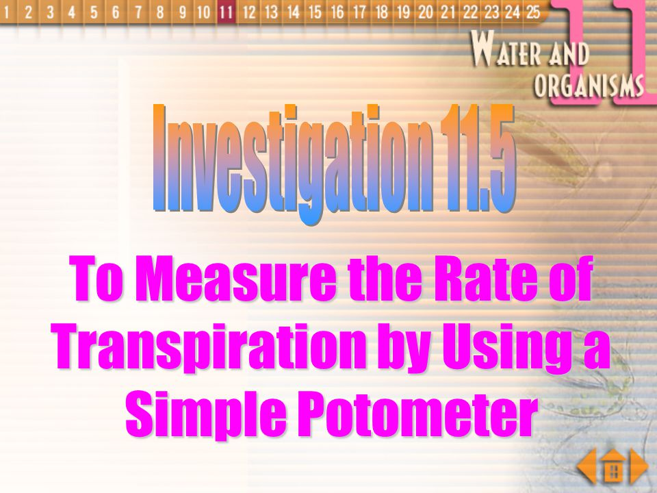To Measure the Rate of Transpiration by Using a Simple Potometer