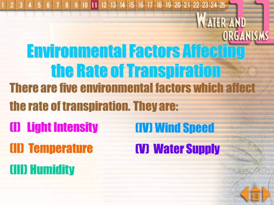 Environmental Factors Affecting the Rate of Transpiration