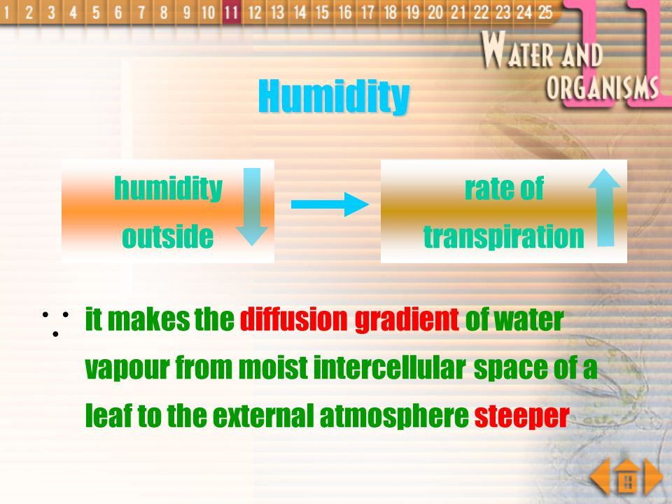  Humidity humidity outside rate of transpiration