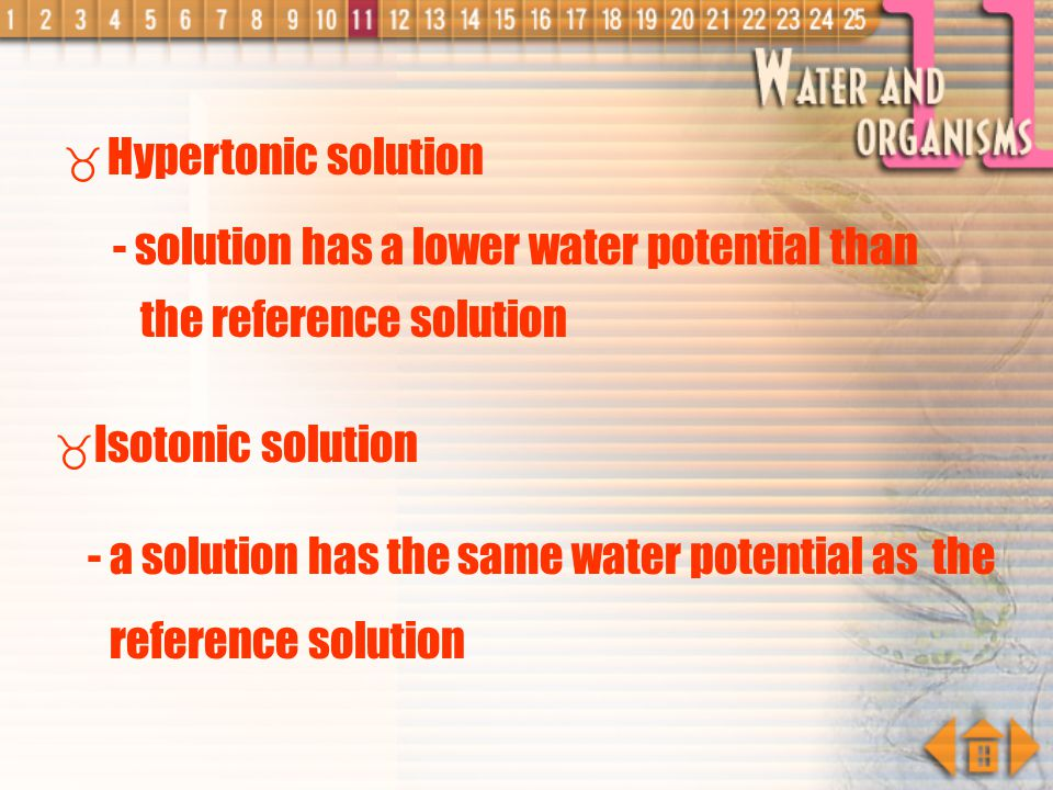 Hypertonic solution - solution has a lower water potential than the reference solution. Isotonic solution.