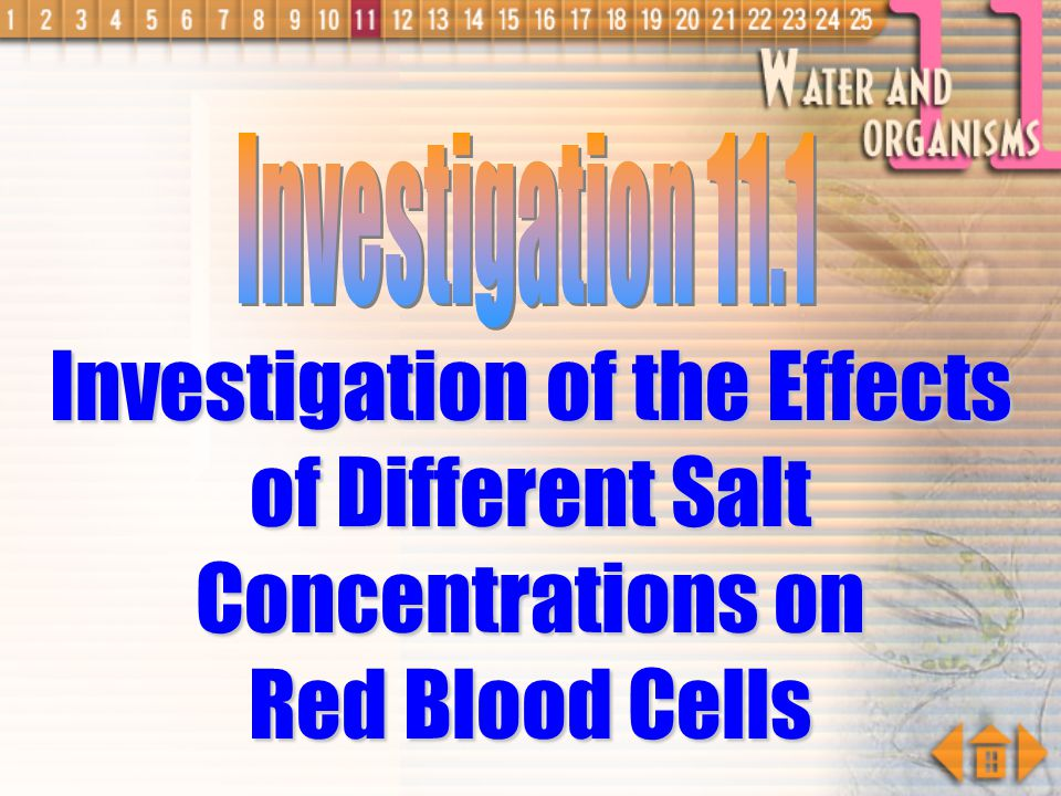 Investigation 11.1 Investigation of the Effects of Different Salt Concentrations on Red Blood Cells.